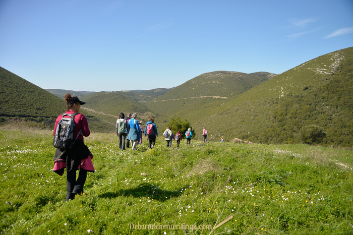 A group of walkers heading towards some lush, green hills on Zakynthos.