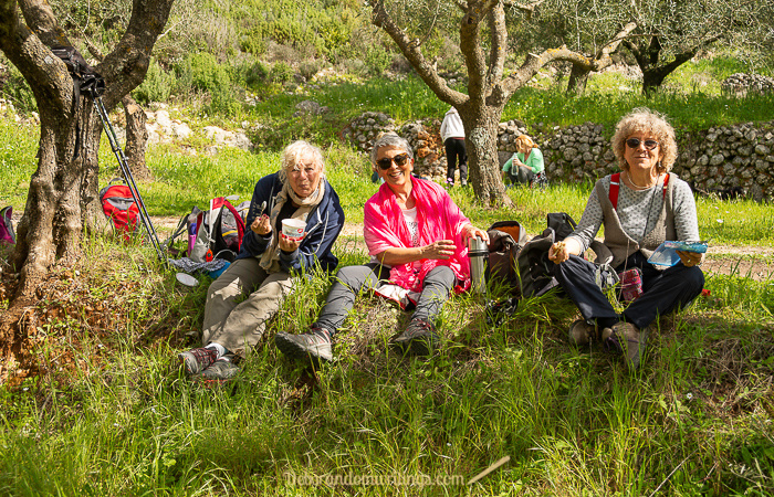 Three ladies enjoying a picnic in an olive grove on Zante.
