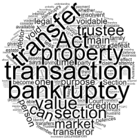 What are Voidable Transactions in Bankruptcy?
