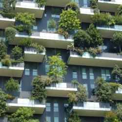 Gaan de huizenprijzen dalen? #debudgetman.nl