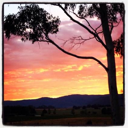 Orange in the sky at sunrise
