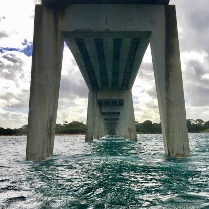 Under the bridge in Port Phillip Bay Melbourne