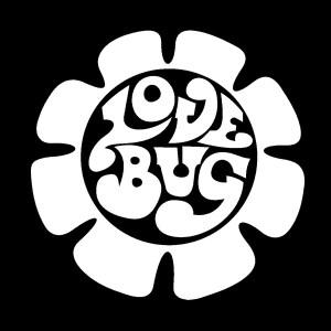 vw love bug decal
