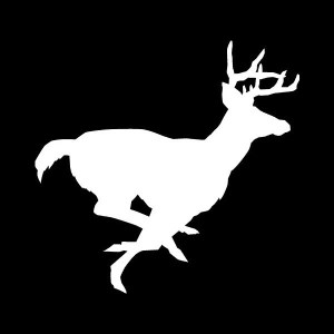 buck deer decal