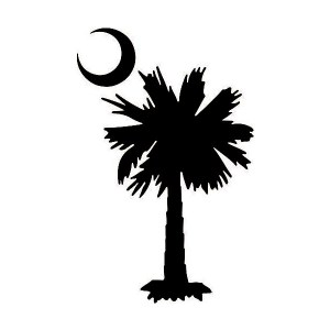 south carolina iron-on decal