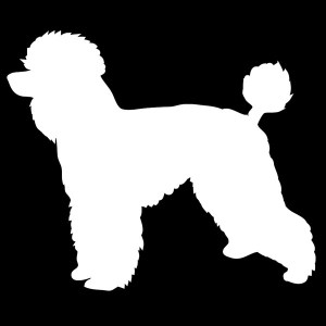 poodle decal
