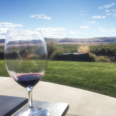The view of Red Mountain AVA at Fidelitas Wines