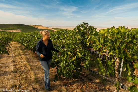 Lacey Lybeck, Vineyard Manager, Sagemoor