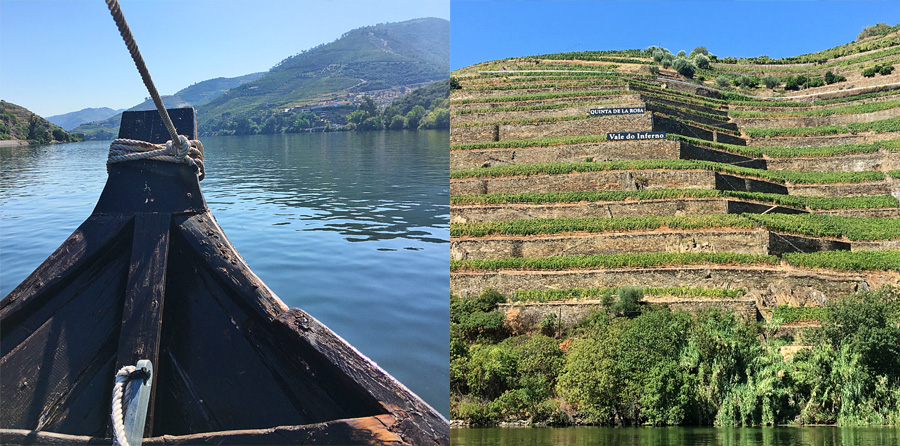 Duoro River and terraced vineyards