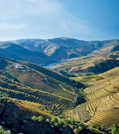 World heritage wine regions: Douro Valley, Portugal ...