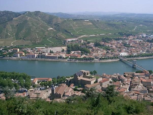 viñedos en côtes du Rhône