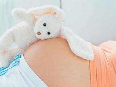 Бременност и животни
