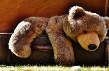 Трудностите са необходими или как да отгледате децата си без чувство на вина