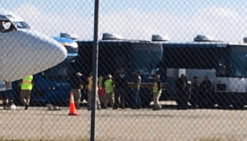 buses and airplanes
