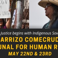 TAKE ACTION: Carrizo Comecrudo Tribunal for Human Rights
