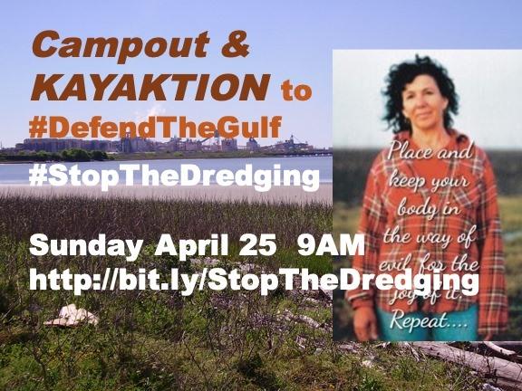 defend the gulf w diane wilson