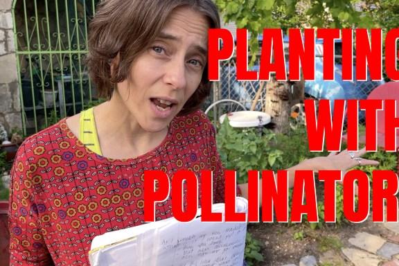 PLANTING WITH POLLINATORS