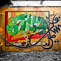 The Palestinian Environment Under Israeli Colonization