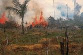 ecocide amazon burning nasa