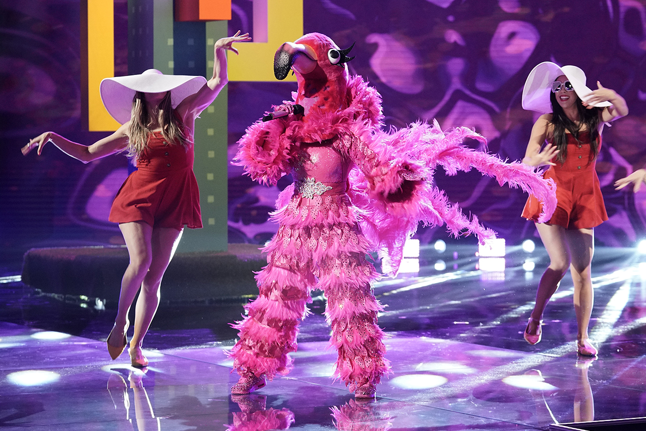 Who Is The Flamingo On The Masked Singer