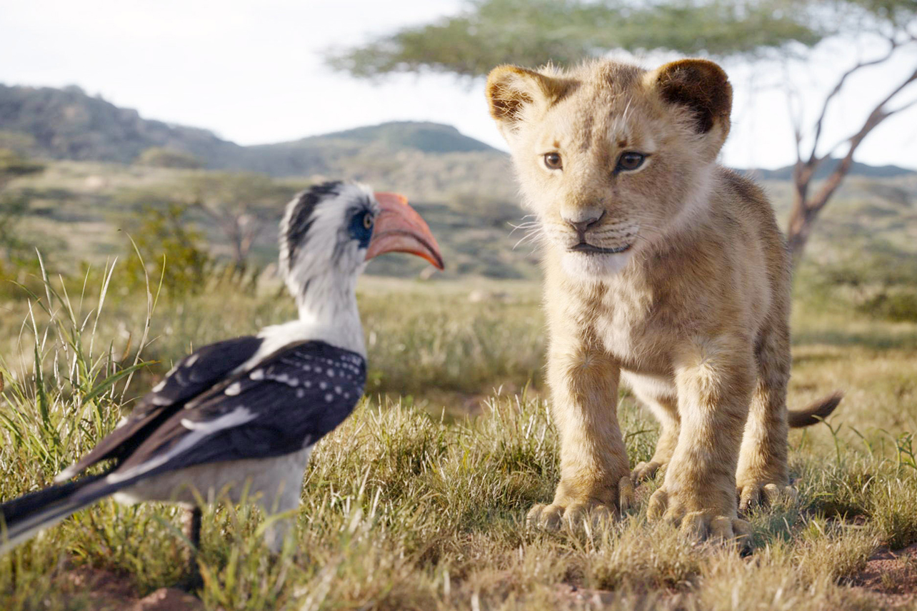 The Live Action Lion King Is Now On Disney Plus