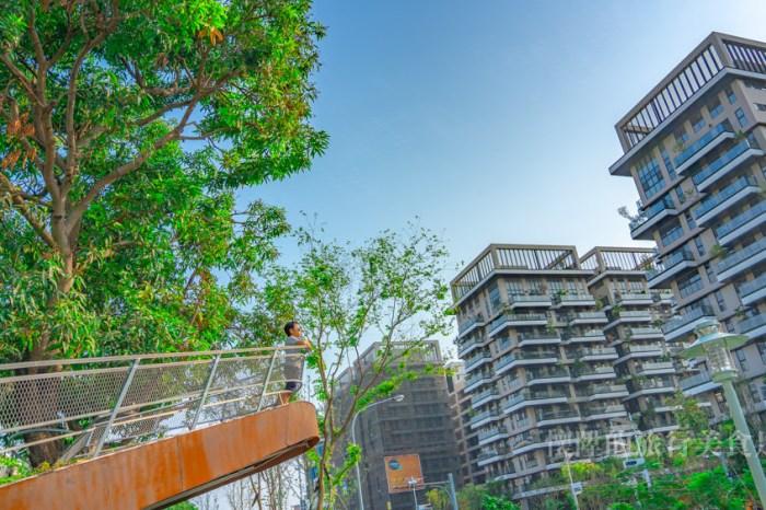 【台南景點】台南版鐵達尼號拍攝場景,帶你去看看光陰的故事:水交社文化園區