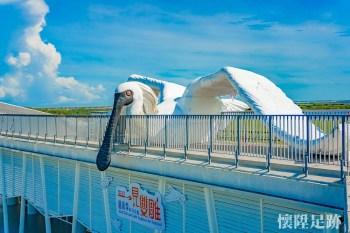 【台南景點】全球最大的「黑面琵鷺王」降臨台南七股遊客中心!