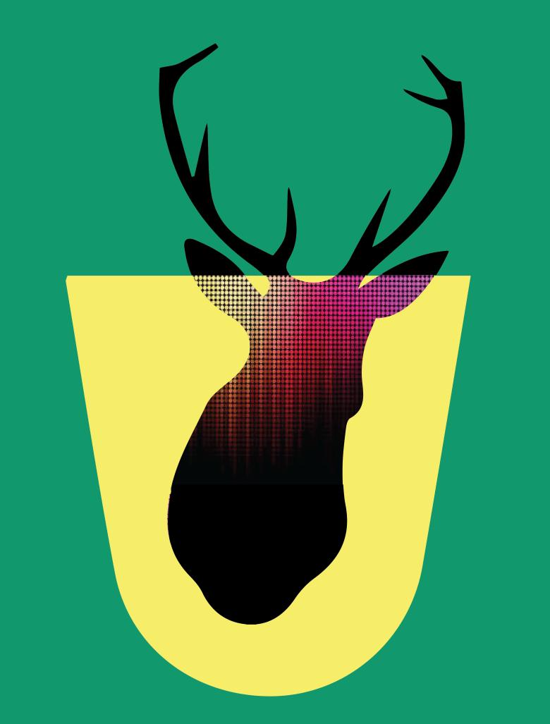 birdsandbees-01
