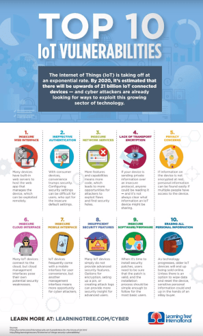 ten Internet of Things (IoT) vulnerabilities