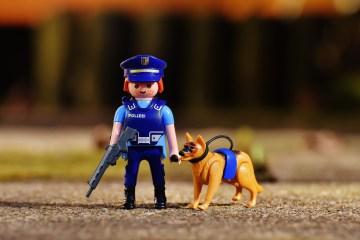 Des promenades obligatoires pour les chiens ?
