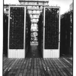 En cage, photo noir et blanc, Jean-Pierre Devals