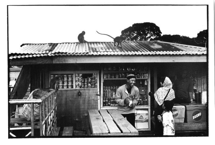 Singe sur le toit, Indonésie, photographies argentiques, Devals