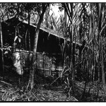 Cabane dans la canne, Indonésie, Voyage et photo