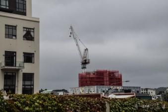 Architechure in Wellington 1-