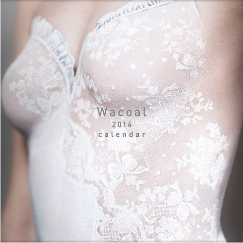 「Wacoal 2014 calendar」全国カレンダー展金賞&国際カレンダー展(ドイツ)銅賞のW受賞!