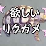 ★ケヅメリクガメが欲しい飼いたい買いたい育てたいイグアナもいるから大きいのバッカ(笑)
