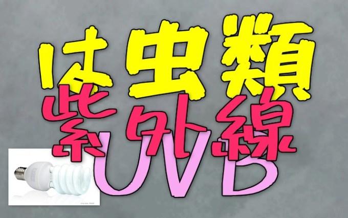 爬虫類紫外線UVB