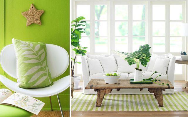 dekorasyon-oturma-yemek odası-yeşil-01