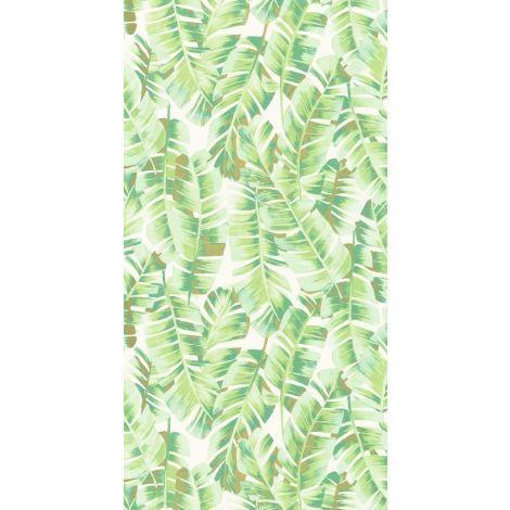 Décor papier peint Folium vert feuille