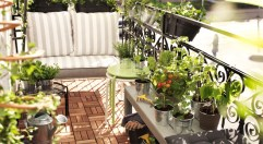 jardin-en-balcon