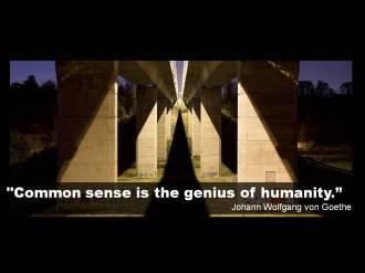Quote Goethe common sense humanity