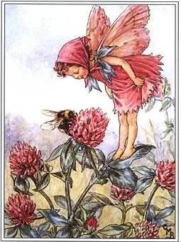 CICELY MARY BARKER (1895-1973) -      A true fairy