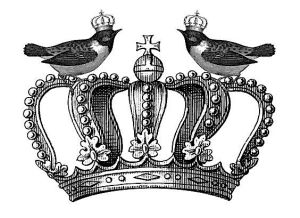 Koronák nem csak királylányoknak