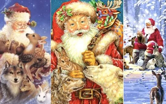 12 Weihnachtsmann Bilder mit Tieren