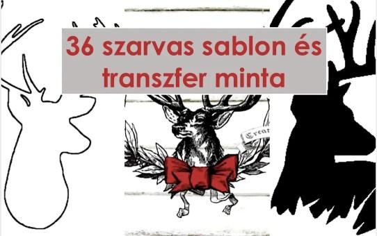 36 szarvas sablon és transzfer minta