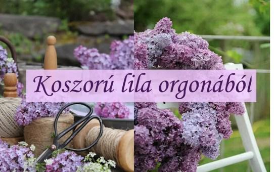Koszorú lila orgonából