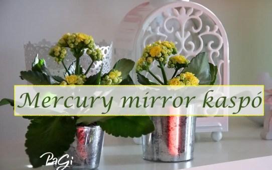 Mercury mirror kaspó - MiniMaLista 44