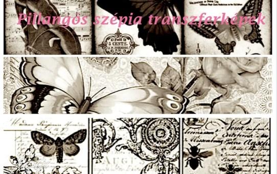 Pillangó, butterfly - transzfer képek, idézetek, érdekességek 2.