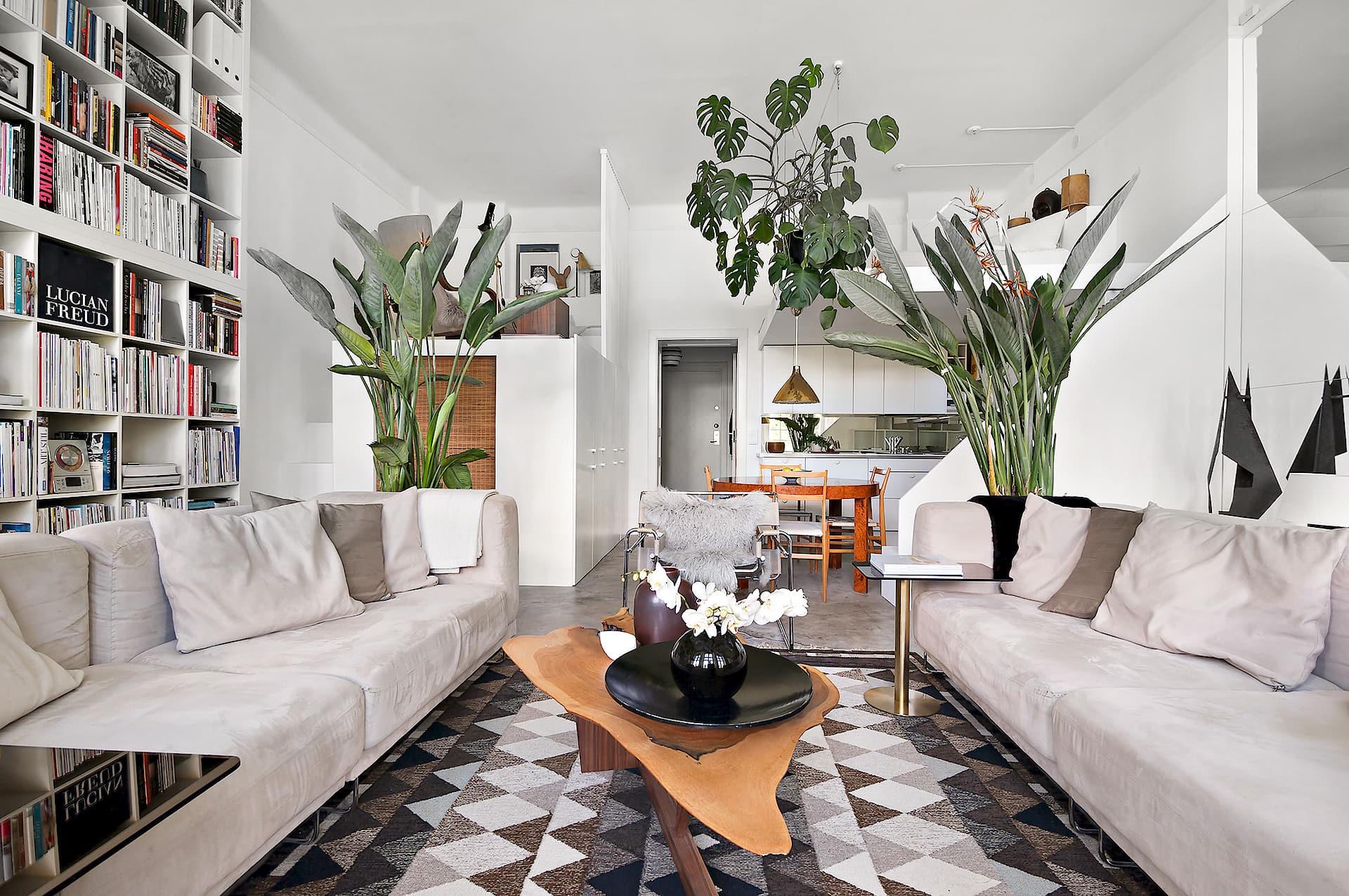 гостиная диваны комнатные цветы