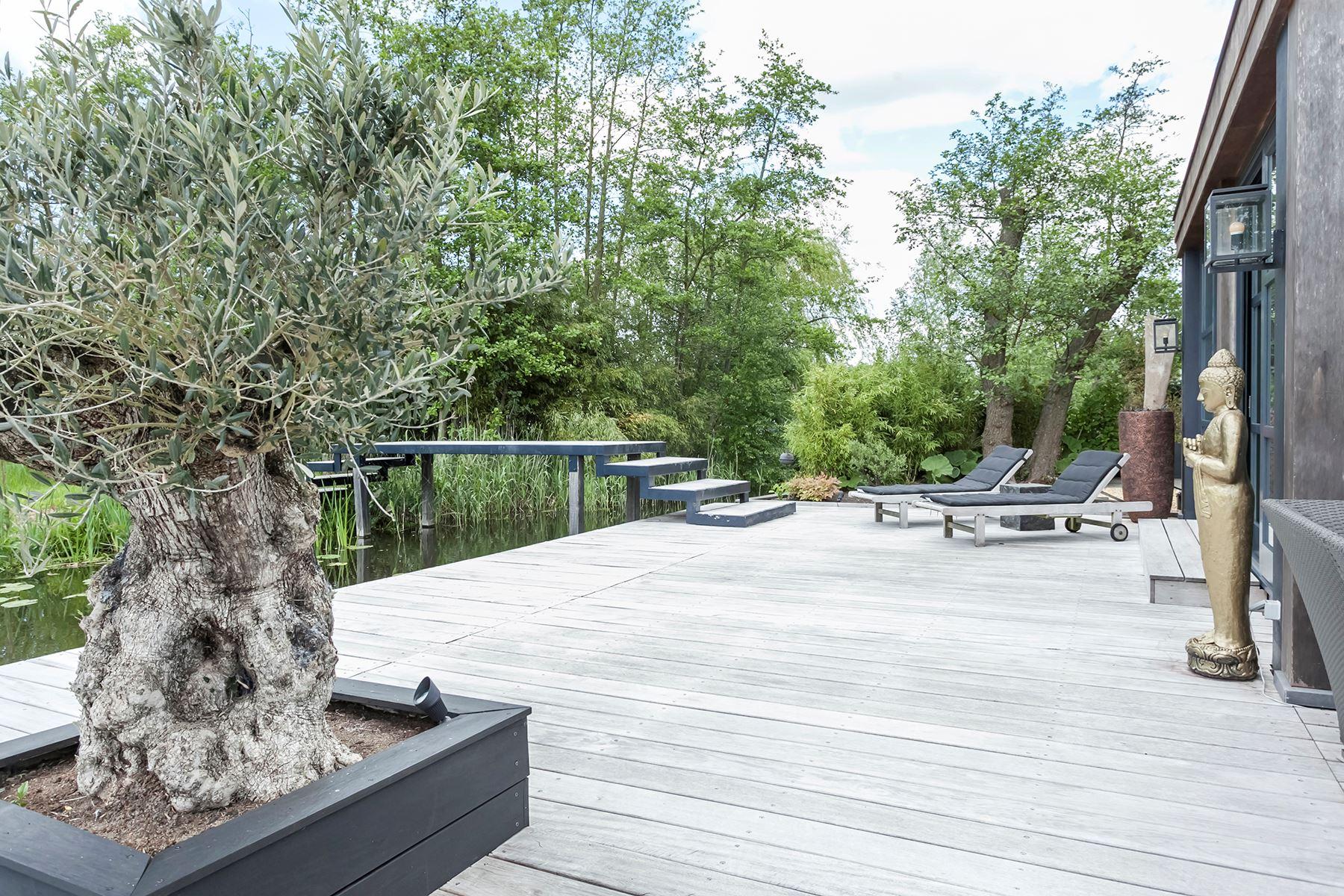 деревянная терраса деревья мостик